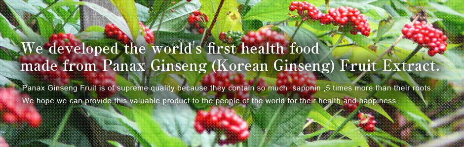 We developed the world's first health food made from Panax Ginseng (Korean Ginseng) Fruit Extract.