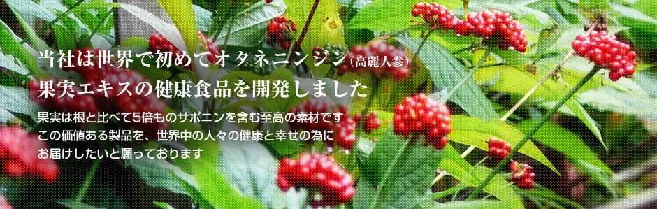 当社は世界で初めてオタネニンジン(高麗人参)果実エキスの健康食品を開発しました